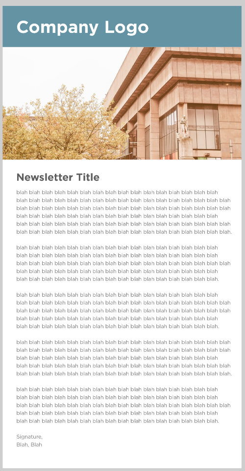 Mocked-up image of a long, all-text, email message.